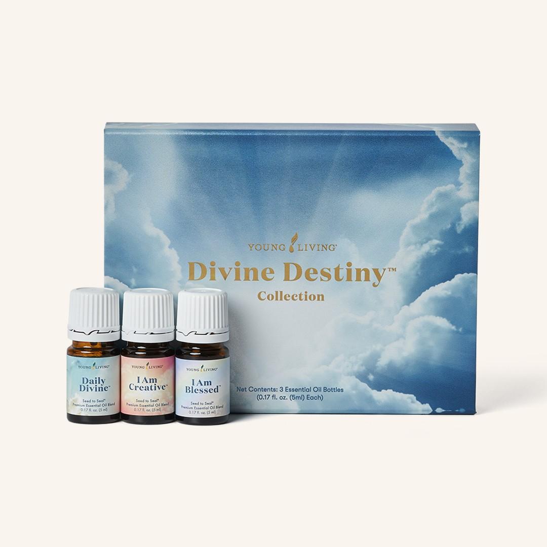Divine Destiny Collection