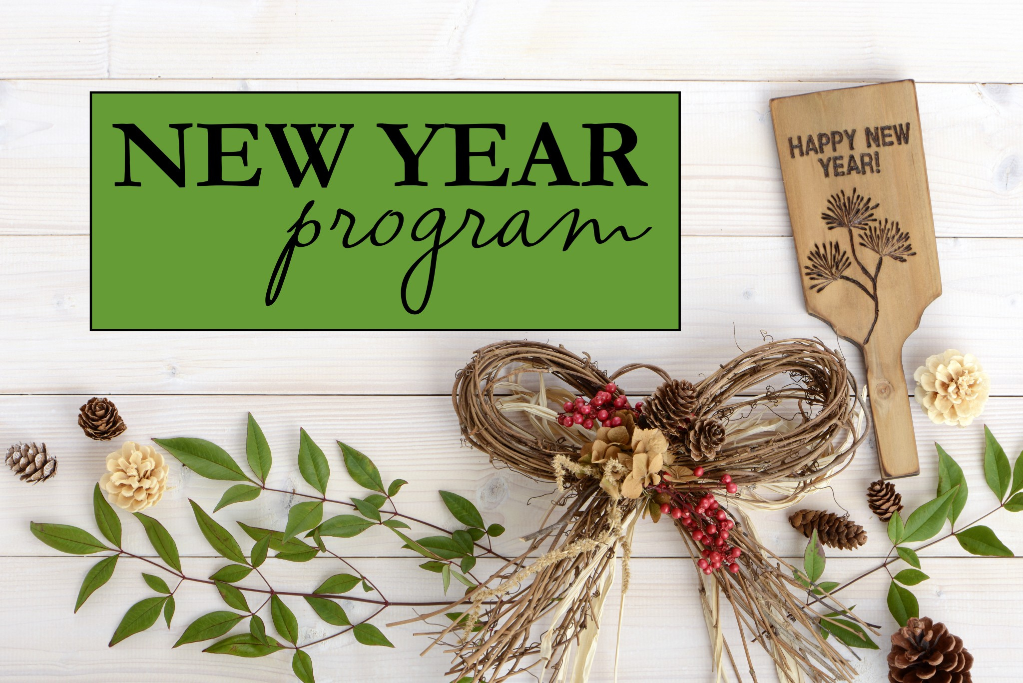 New Year New You Program