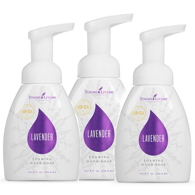 Lavender Foaming Hand Soap – 3 Pack
