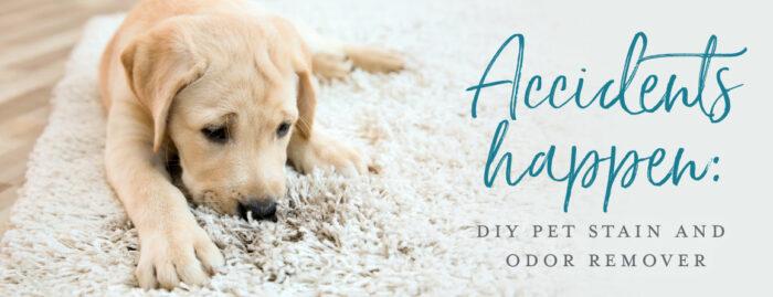 DIY Pet Stain & Odor Remover;